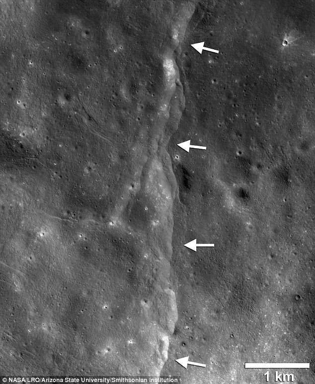 The lobate thrusts faults create step-like cliff formations on the surface of the moon, like the one shown above. They were initially thought to be due to the cooling of the interior causing the moon to shrink, cracking the brittle crust, but the new research has shown the Earth's gravity is also taking its toll