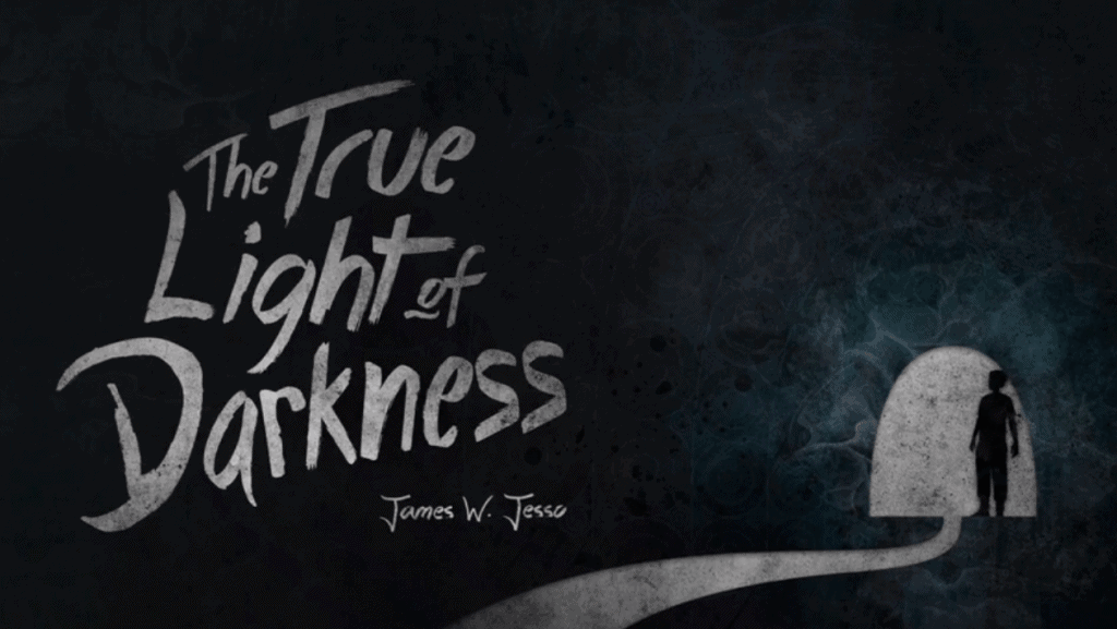 Cover of The True Light of Darkness by James W. Jesso.