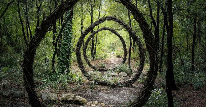 Artist Spends Year Alone In Forest Creating Organic Works Of Art