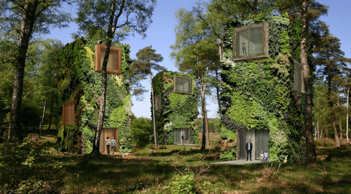 This Architect Has Designed The World's Most Eco Friendly And Stunning Tree Houses Ever