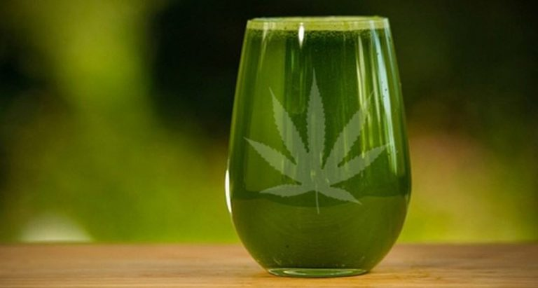 5 Reasons You Should Stop Smoking Cannabis And Start Juicing It