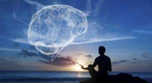 Brain Meditation Harvard