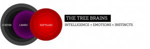 the-tree-brains1-300x98