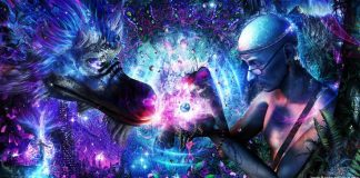 The 3 Realms of DMT – Sociedelic