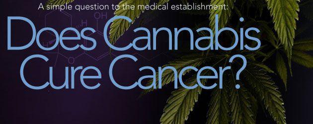 doescannabis2