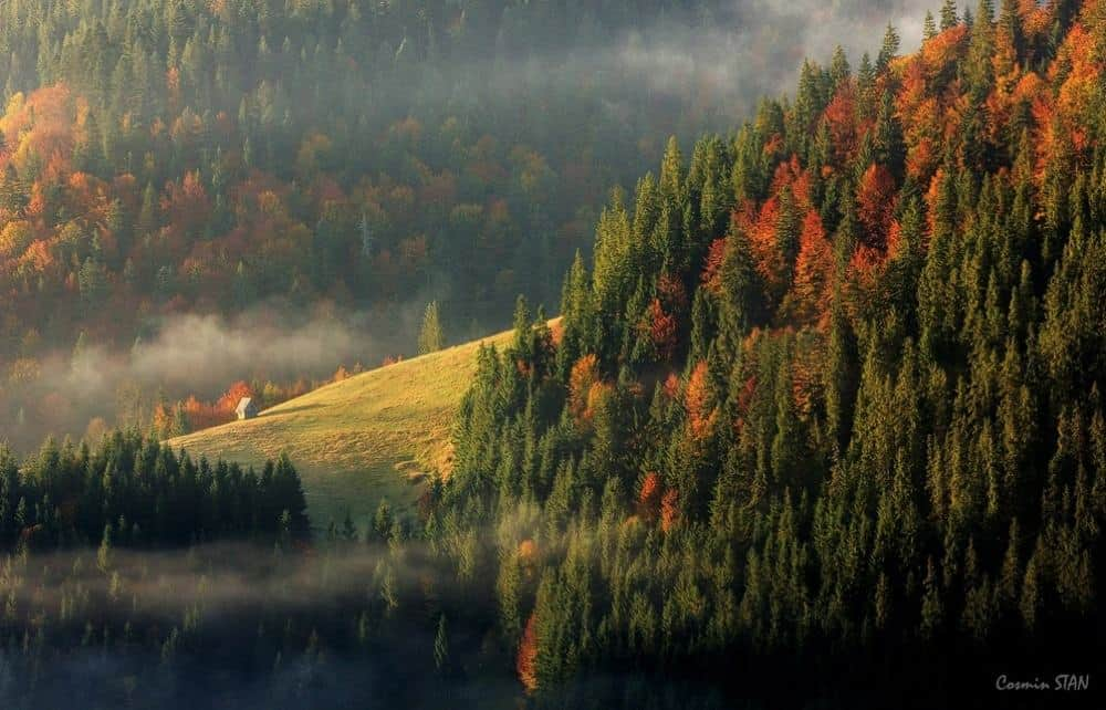 © Stan Cosmin Ovidiu The western Romanian mountains.