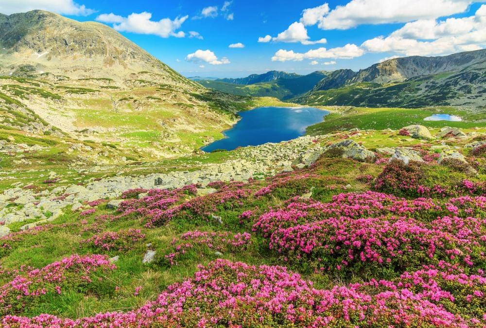 © Janos Gaspar Retezat National Park, Carpathians.