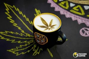 Cannabis-Coffee-Growing-in-Popularity-As-Consumers-Grow-Wise-To-Health-Benefits