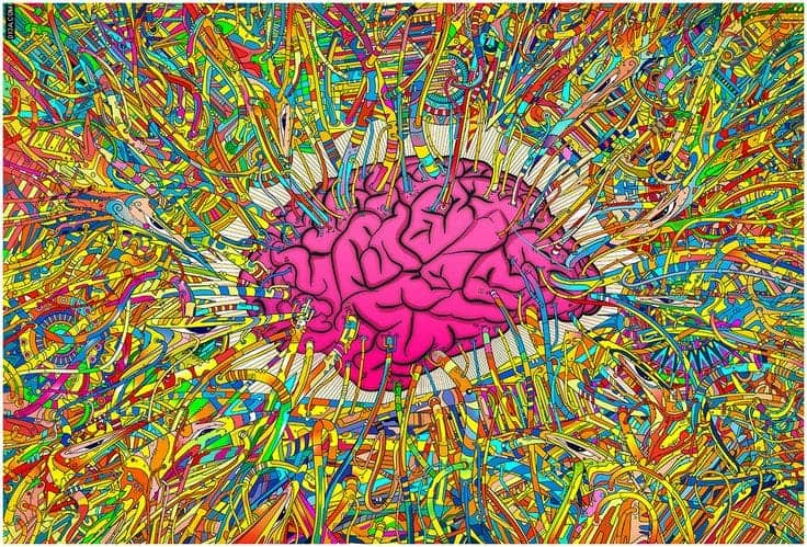 New psychedelic science group forms at Yale