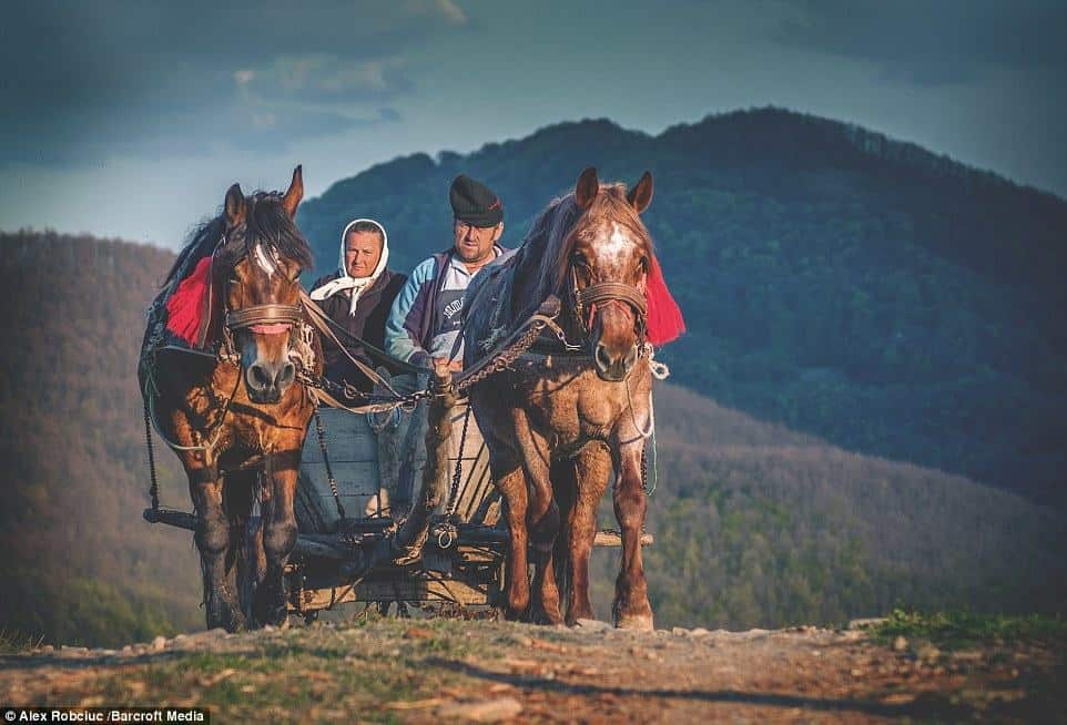 People work eke out their existence from the land in the remote Carpathian Mountains area otherwise known as the Transylvanian Alps