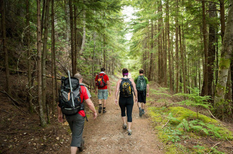 Doctors Explain How Hiking Actually Changes Our Brains