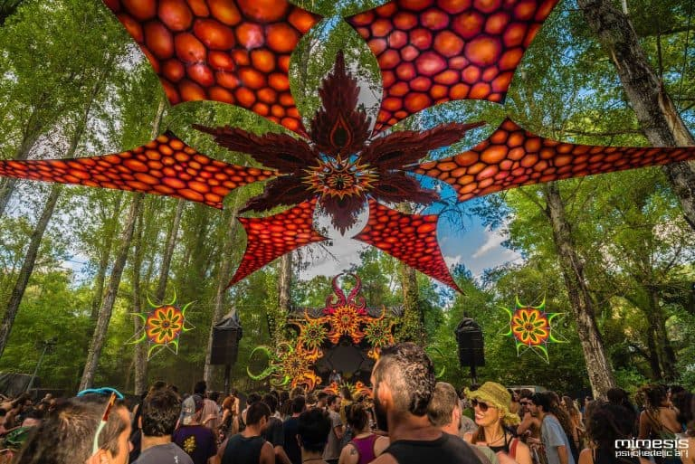 15 Reasons to love the Experience Festival