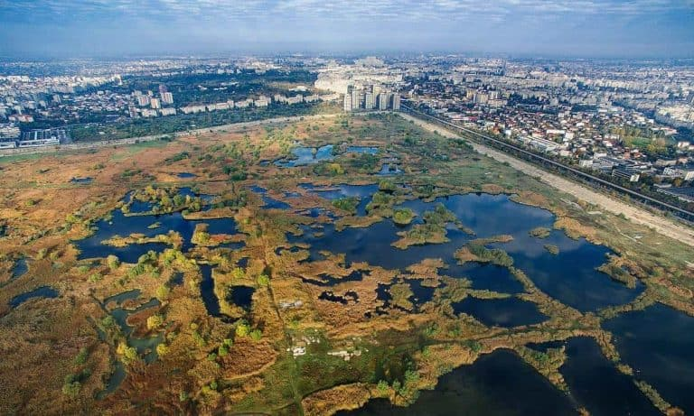 Bucharest Nature Park-  One of Europe's Largest Nature Park