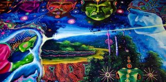 Ayahuasca and Creativity