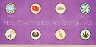 How Psychedelics Saved My Life