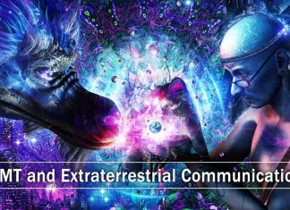 DMT and Extraterrestrial Communication