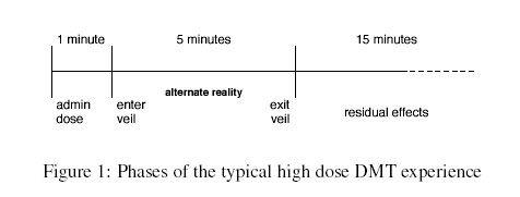 DMT Phases