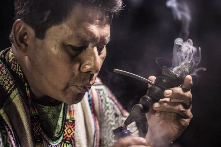 International Ayahuasca Research – Under The Microscope