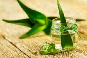 Aloe vera cure cancer