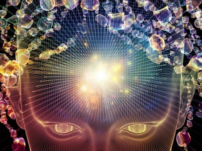 Using Mushrooms Reconstructs the Brain