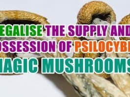 Legalise the supply and possession of psilocybin ('magic') mushrooms