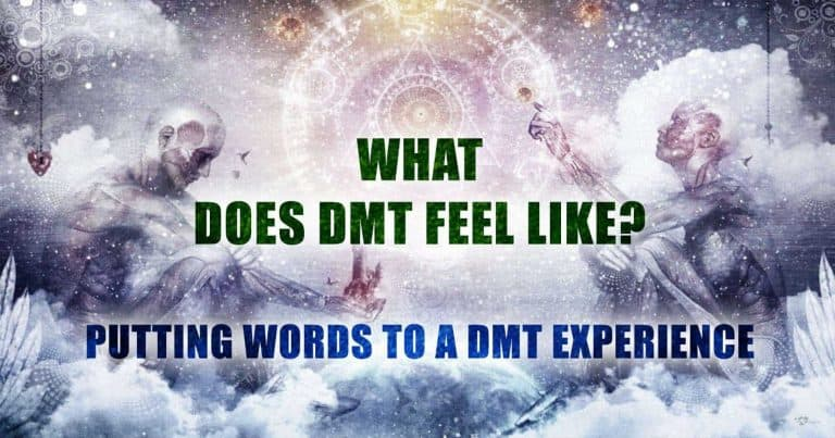 What Does DMT Feel Like? Putting Words to a DMT Experience