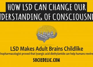 How LSD Can Change Our Understanding of Consciousness