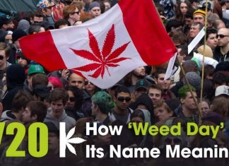 420 Meaning Story Of How April 20 Became National Weed Day