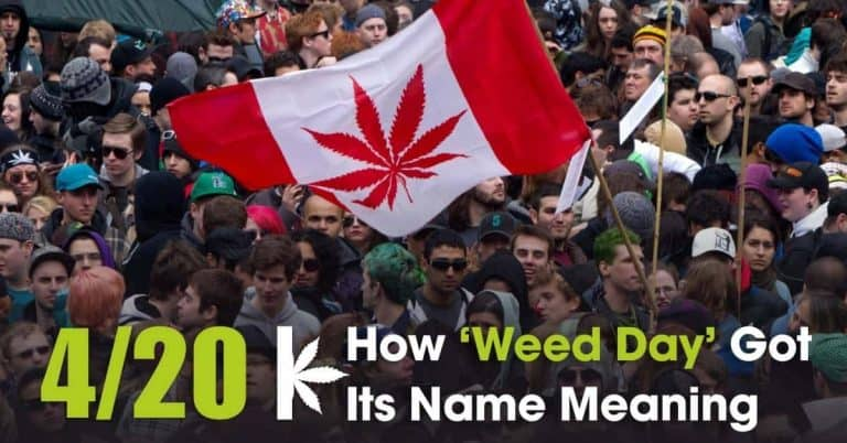 420 Meaning: Story Of How April 20 Became 'National Weed Day'