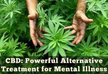 CBD Powerful Alternative Treatment for Mental Illness