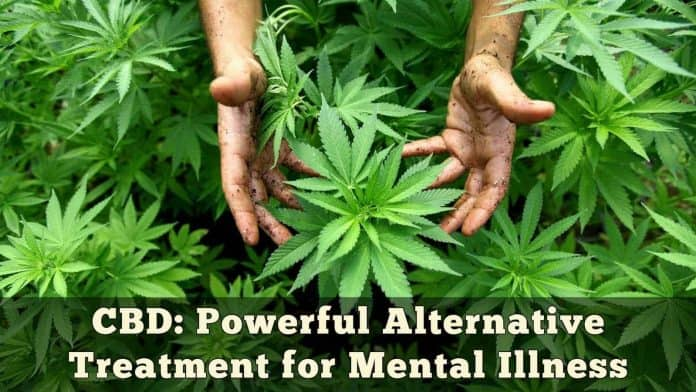 CBD Powerful Alternative Treatment for Mental Illness