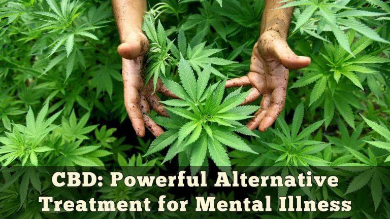 CBD: Powerful Alternative Treatment for Mental Illness
