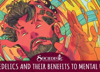 Psychedelics and Their Benefits to Mental Health