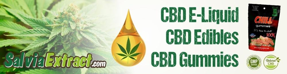 CBD: Powerful Alternative Treatment for Mental Illness | Sociedelic