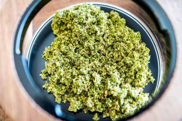 10 Weed Strains To Try Right Now