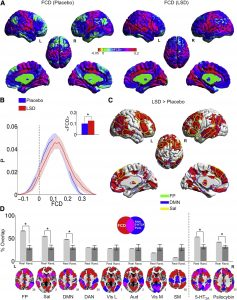 LSD Selectively Increases Global Functional Connectivity of Higher-Level Integrative Cortical and Sub-cortical Regions