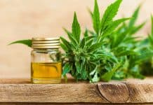 How to Take CBD Oil and Maximize Its Benefits