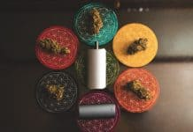 Davinci vaporizers - Vaping cannabis gets you significantly higher than smoking it
