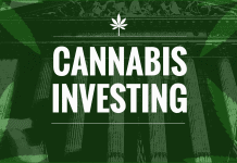 5 Things You Should Know Before Investing in Marijuana Stocks