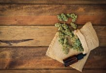 CBD Oil for Addiction Recovery