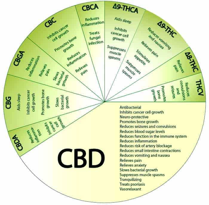 Few facts about CBD