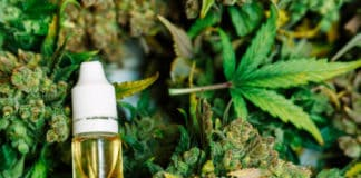 CBD Oil is Becoming New Favorite in the Medical Field