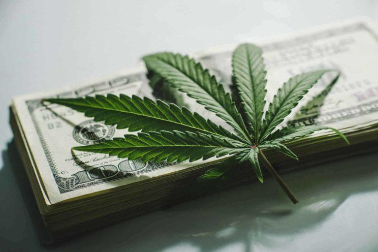 The Future Of Marijuana Stocks