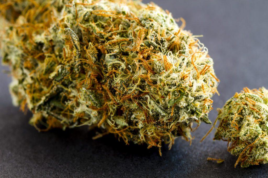 Close up of medical marijuana buds sitting black background