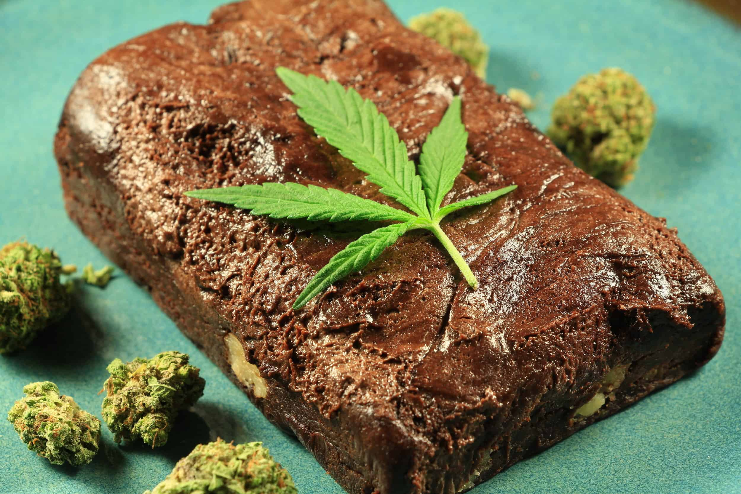 Cannabis edibles explained
